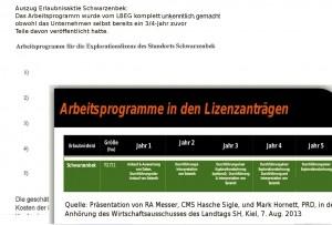 Ausschnitte aus den jetzt veröffentlichten Antragsunterlagen und der Präsentation von PRD im August 2013